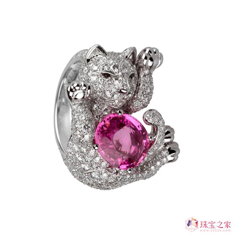 宝诗龙2010动物系列猫